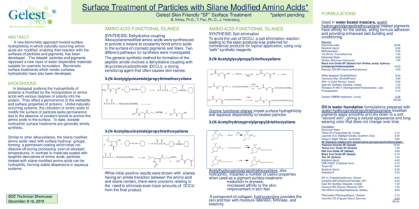 PDF) Surface Treatment of Particles with Silane Modified