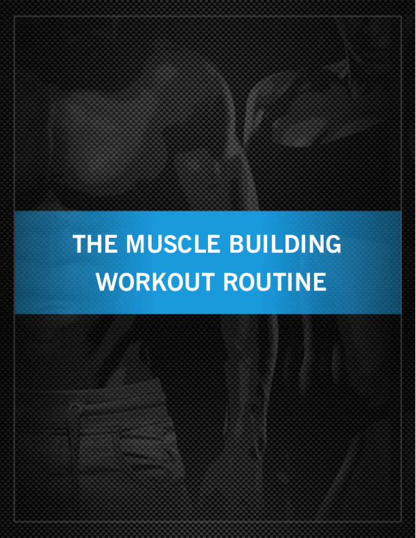 PDF) THE MUSCLE BUILDING WORKOUT ROUTINE | Everette Young