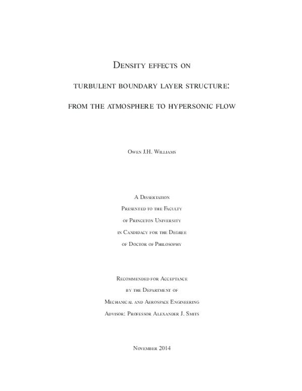 dissertation martin schraub