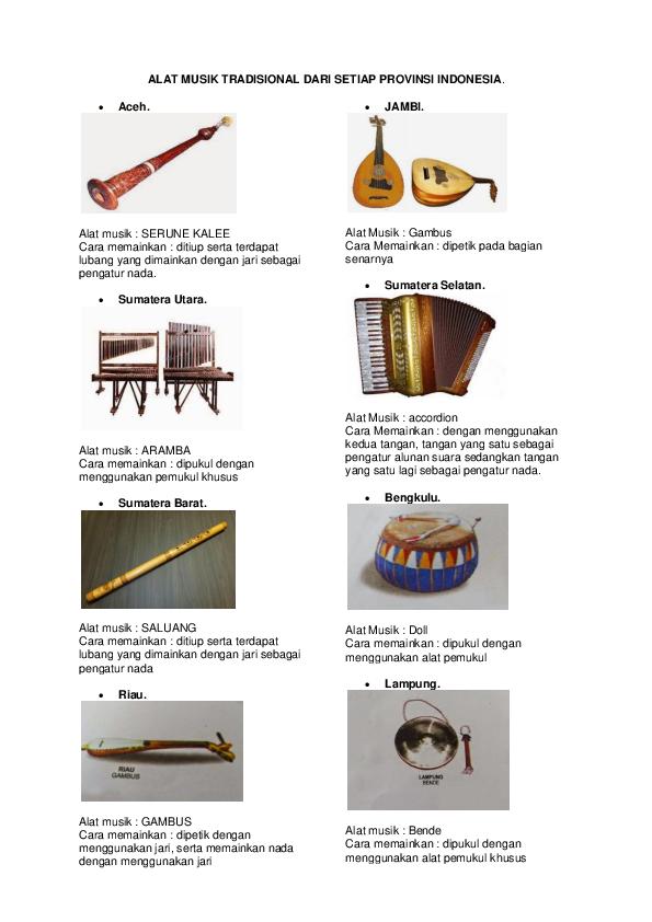 Doc Alat Musik Tradisional 34 Provinsi Indonesia Dan Gambar Bidenk Erz Academia Edu