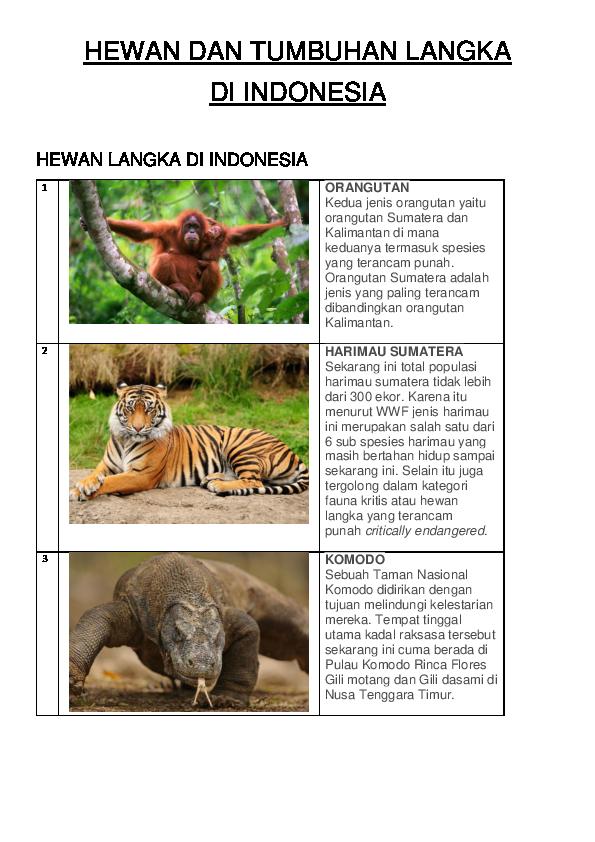 48 Koleksi Gambar Hewan Langkah Dan Tumbuhan Langkah Terbaik
