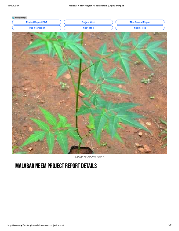 PDF) Project Cost The Annual Report Tree Plantation Cost