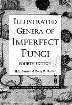 PDF) Illustrated genera of imperfect fungi-fourth edition. Barnett ...