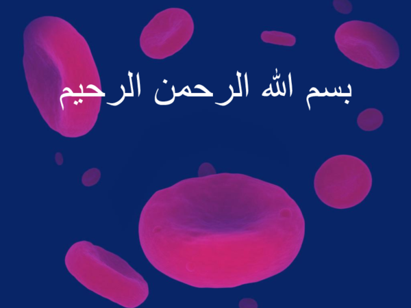 PPT) bloob bank ppt | Manar Ramadan - Academia edu
