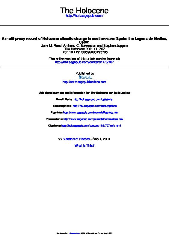 Funcionamiento básico del chat gaditano