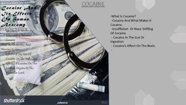 PPT) Presentation on how cocaine works | Olanrewaju Olabayo