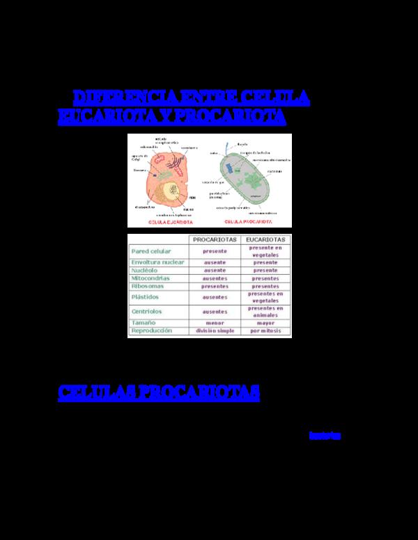 Doc F 0 B 7 Diferencia Entre Celula Eucariota Y Procariota Celulas Procariotas Juan Tot Academia Edu