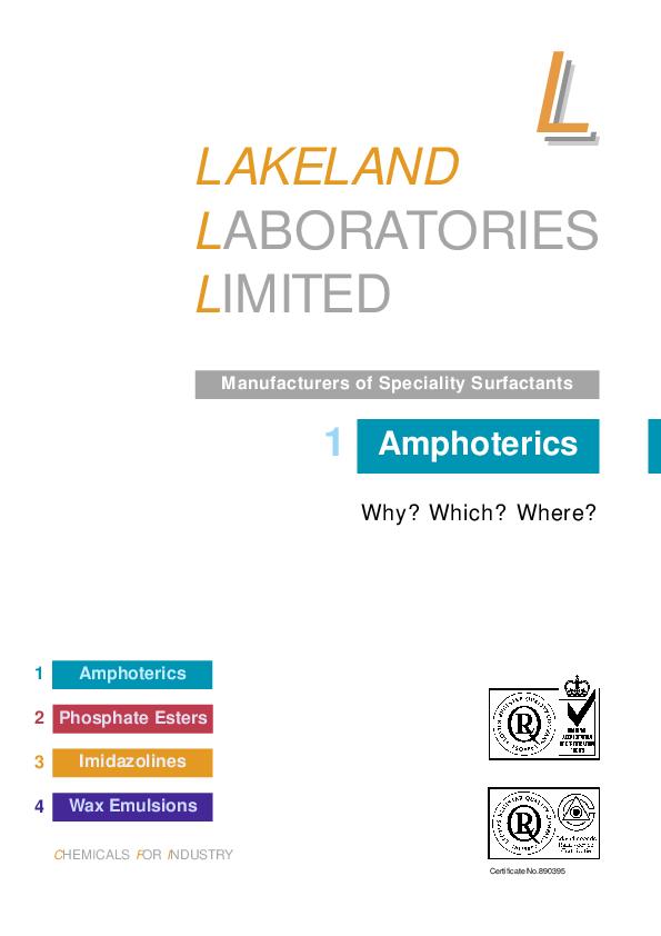 PDF) Present lakeland ama | Anastasia Lupinos - Academia edu