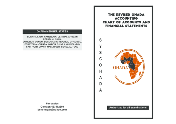 Pdf The Revised Ohada Accounting Chart Of Accounts And Financial Statements Benoit Ngah Academia Edu