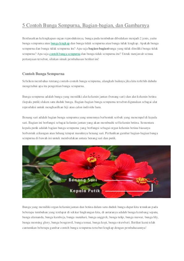 Unduh 7100 Gambar Bunga Lengkap Dan Bunga Sempurna Gratis Terbaru