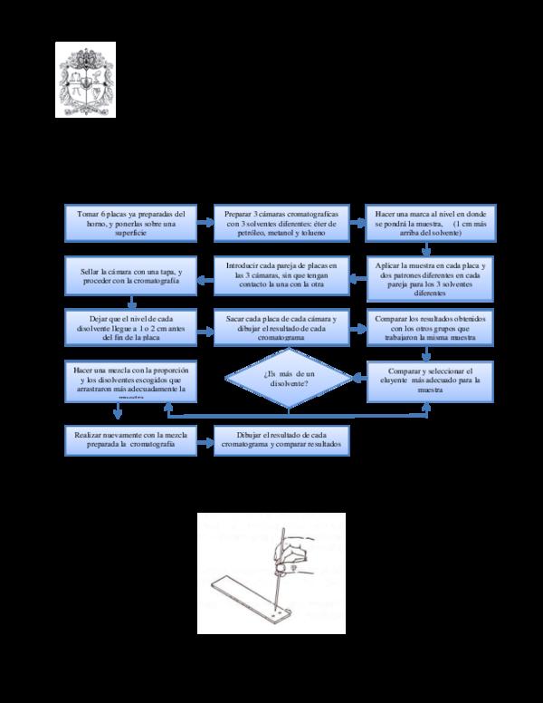 a1c1ddc18 Lab Organica P5.docx | Daniel Torres - Academia.edu