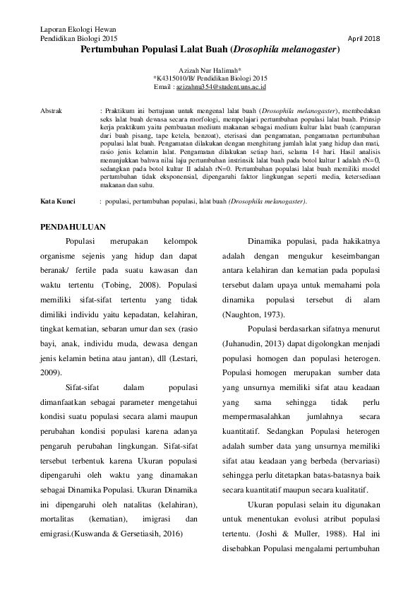 80 Gambar Abstrak Lalat HD
