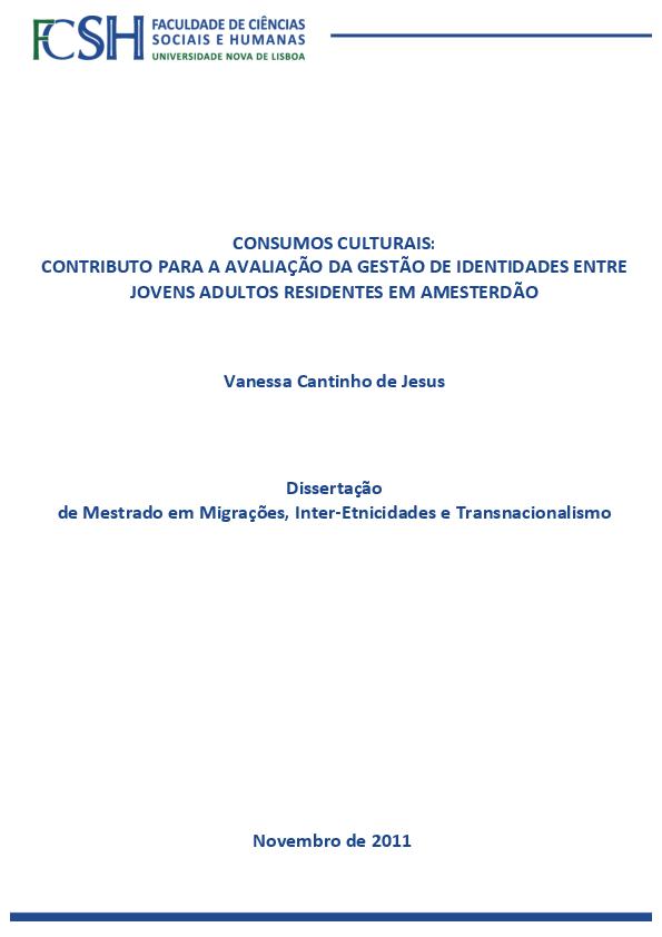bdbb944b3cb Consumos culturais  contributo para a avaliação da gestão de ...