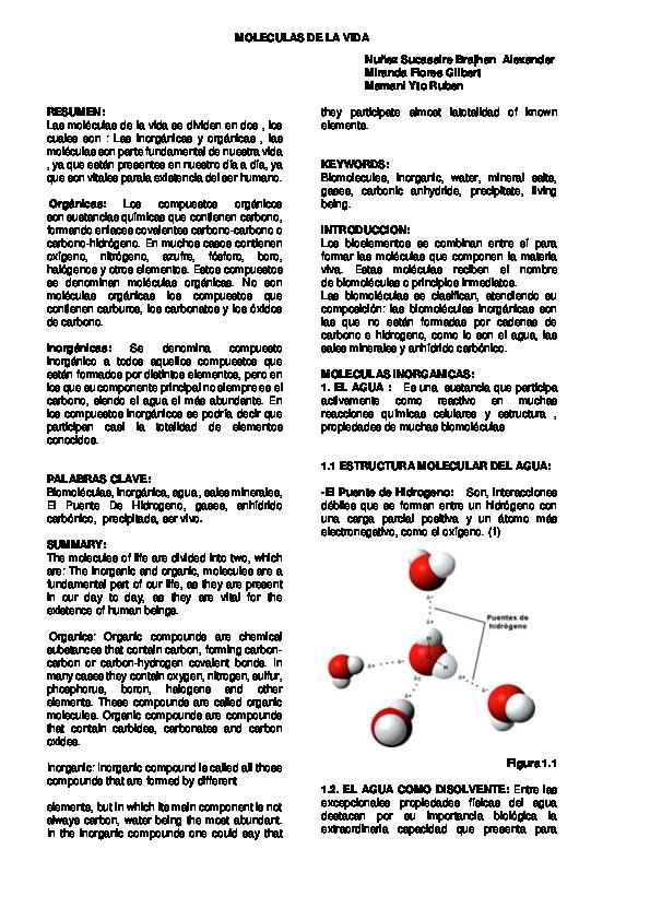 Pdf Articulo Molecul As De La Vida Inorganicas 1
