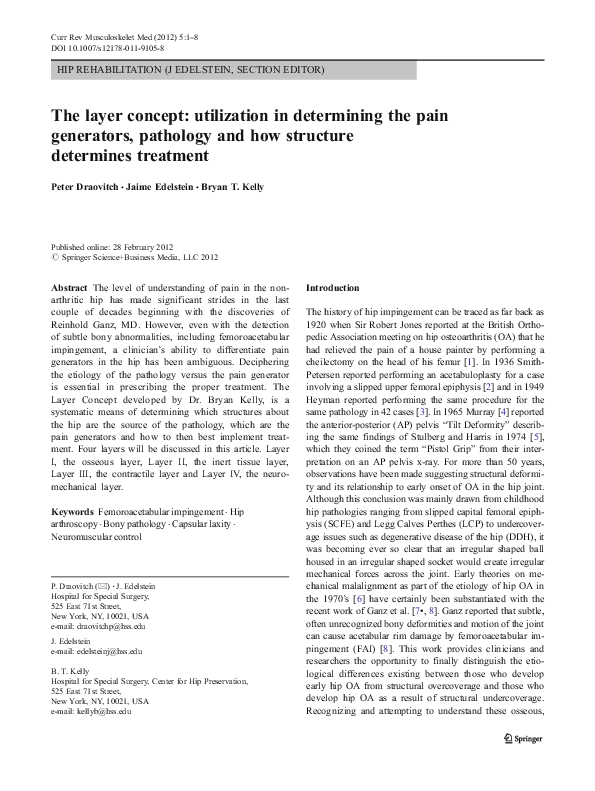 PDF) The layer concept: utilization in determining the pain