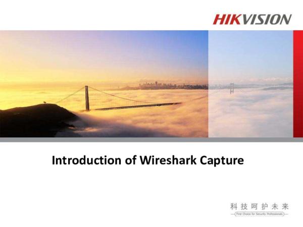PDF) Introduction of Wireshark Capture   juan deniz - Academia edu