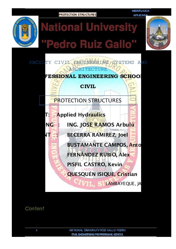 PDF) PROTECTION STRUCTURES | Alex Shamir Fernández Rubio ...