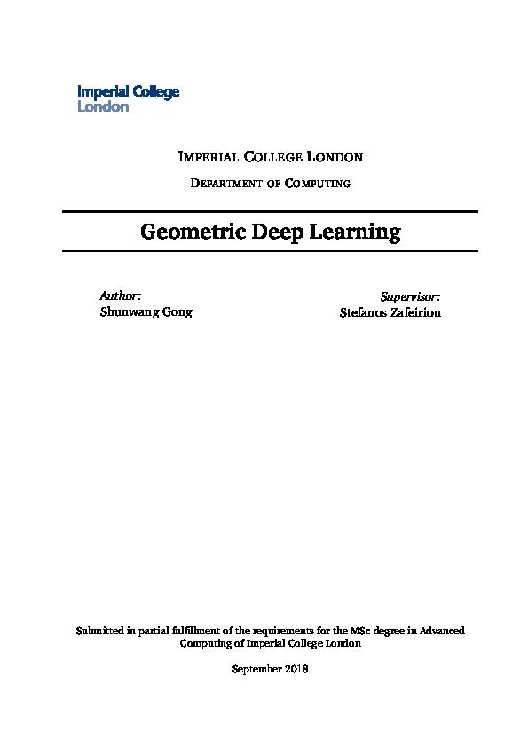 PDF) Geometric Deep Learning | Grupo Wariruna - Academia edu