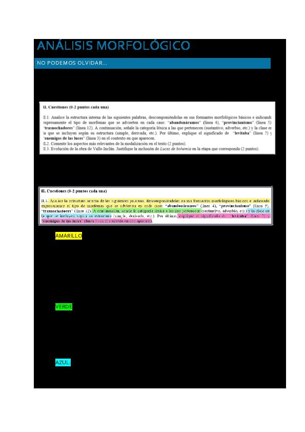 Doc Análisis Morfológico Pau Modelo Samuel Hervas