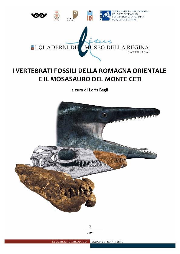 Quali tecniche fare datazione relativa utilizzato per collocare i fossili al loro posto in tempo geologico