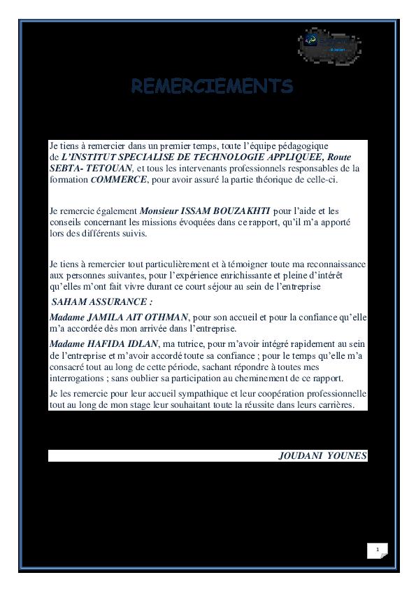 RAPPORT DE SAHAM ASSURANCE STAGE TÉLÉCHARGER