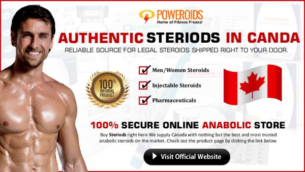 The source check steroids organon theme hotel